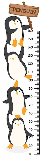 Mur Mètre Avec Pingouin. Illustration. Vecteur Premium