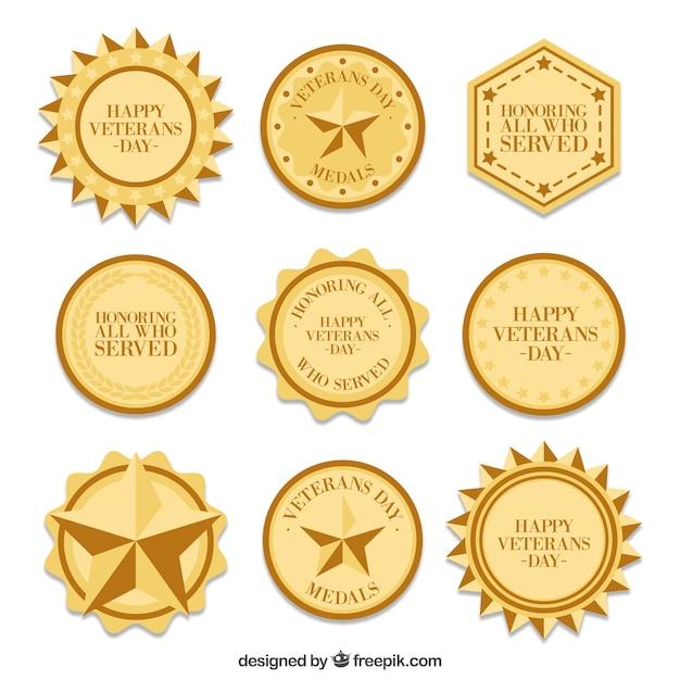 Neuf médailles du jour des vétérans Vecteur gratuit