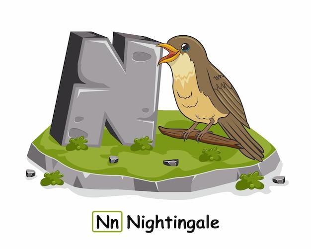Nightingale Bird Alphabet Rock Stone N Animaux Vecteur Premium