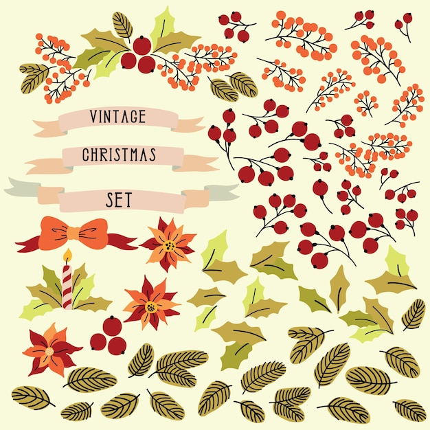 Noël Vintage Sertie D'éléments Isolés, Fleurs, Feuilles Et Baies. Vecteur Premium