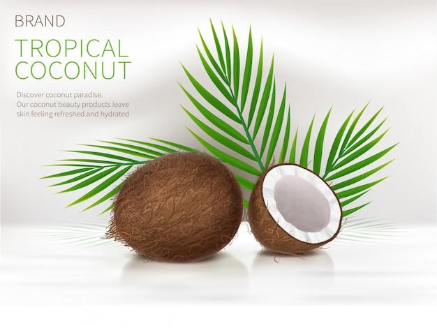 Noix de coco entière et à moitié cassée Vecteur gratuit