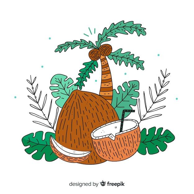 Noix de coco Vecteur gratuit