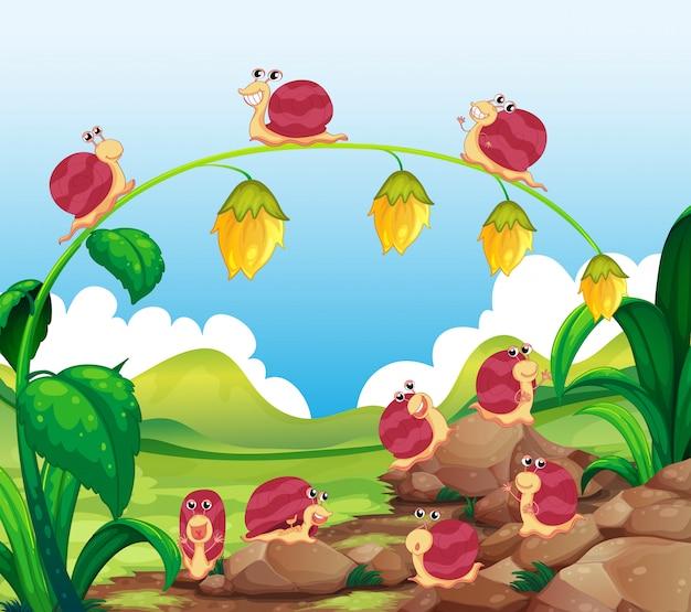 De nombreux escargots rampant dans le jardin Vecteur gratuit