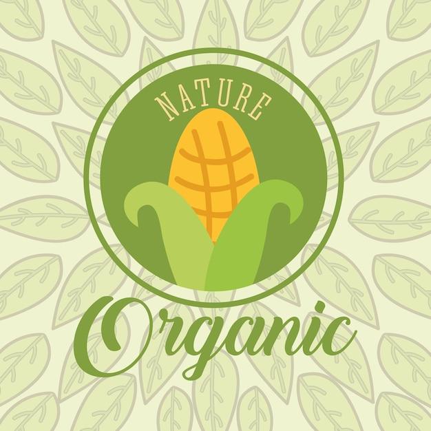 Nourriture organique nature Vecteur Premium
