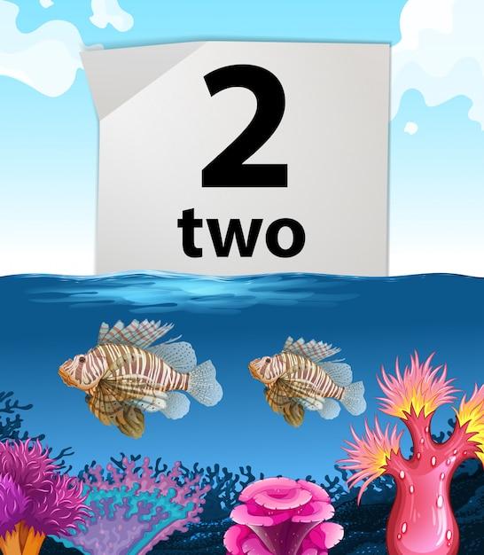 Numéro deux et deux poissons sous la mer Vecteur gratuit