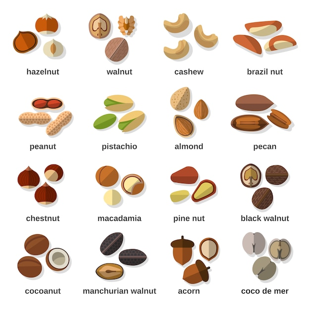 Nuts flat icons set Vecteur Premium