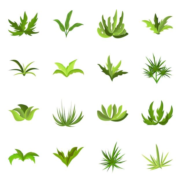 Objet Isolé Du Symbole De Jardin Et D'herbe. Collection De Symbole De Stock Jardin Et Arbuste Pour Le Web. Vecteur Premium