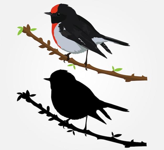 Oiseau magnifique vecteur dessiné à la main illustration Vecteur Premium