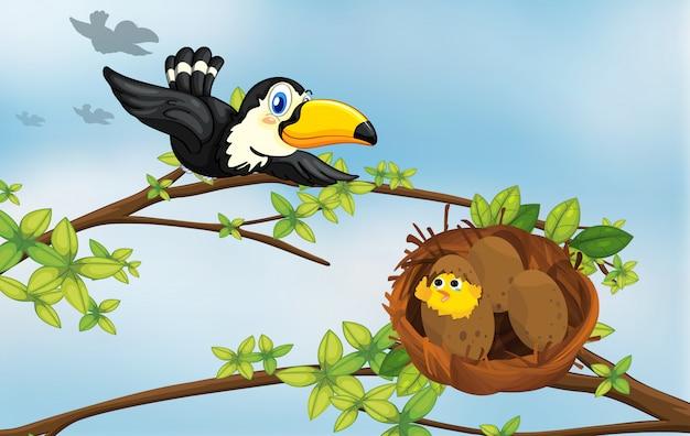 Un oiseau et son nid Vecteur gratuit