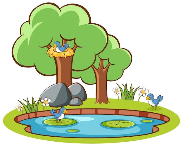 Oiseaux isolés et étang Vecteur gratuit