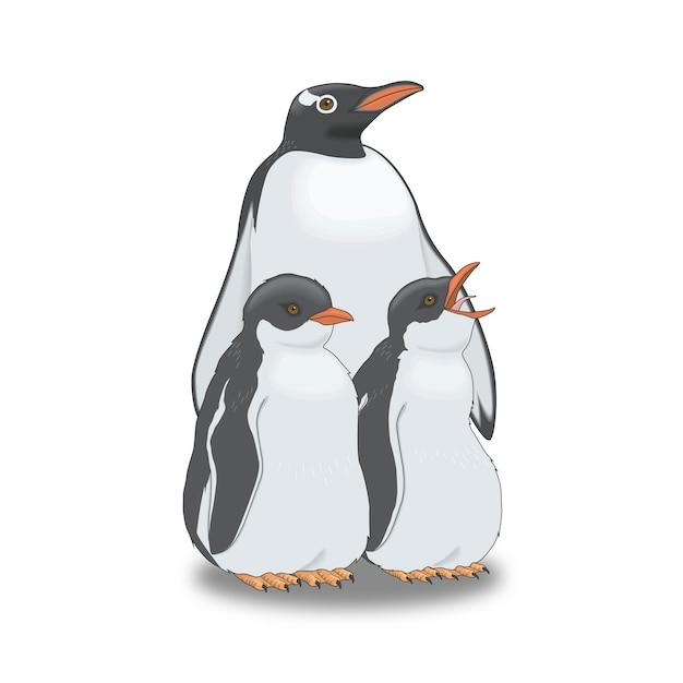 Oiseaux de pingouins Vecteur Premium