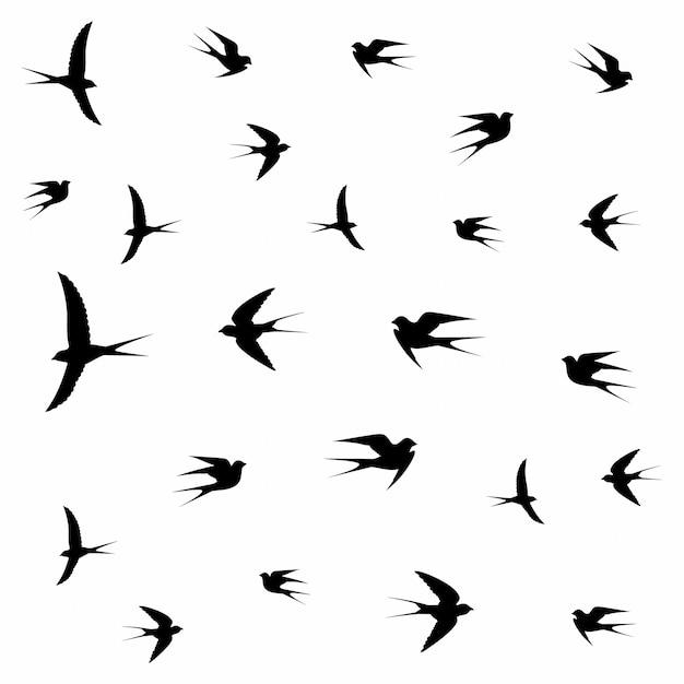 Oiseaux volant dans les nuages Vecteur Premium