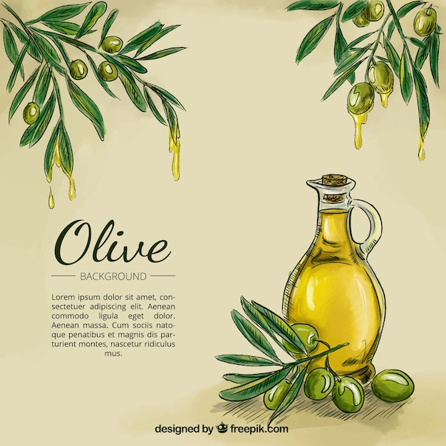 Olive esquisse à l'huile de fond Vecteur gratuit