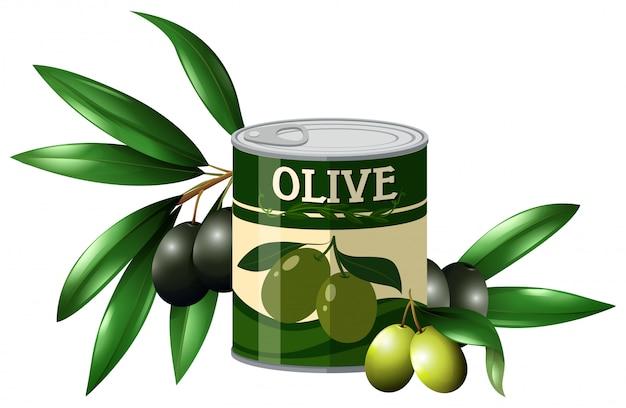 Olive fraîche et olive en canette Vecteur gratuit