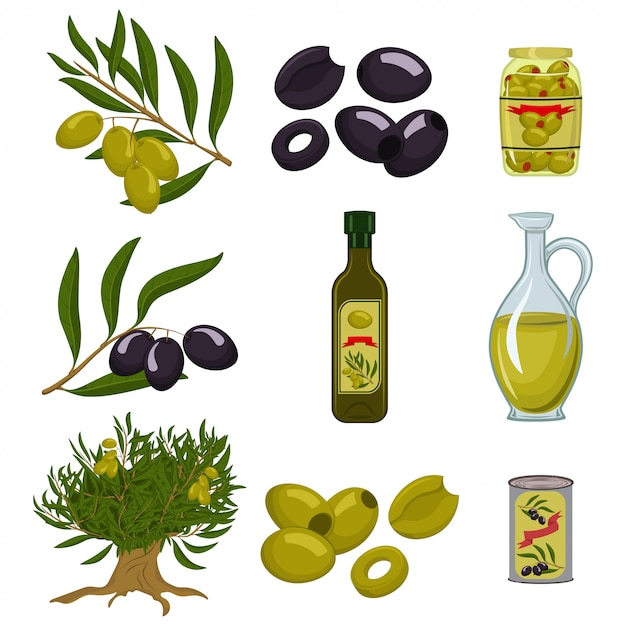 Les olives noires et vertes sont entières et tranchées Vecteur Premium