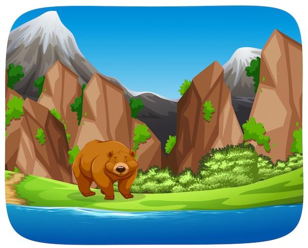 Ours brun dans une scène de montagne Vecteur gratuit