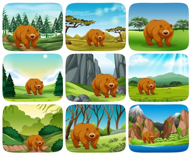 Ours brun dans des scènes de la nature Vecteur Premium