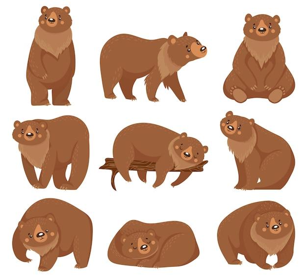 Ours Brun De Dessin Animé. Ours Grizzlis, Animaux Prédateurs De La Forêt Sauvage Et Illustration D'ours Assis Vecteur Premium