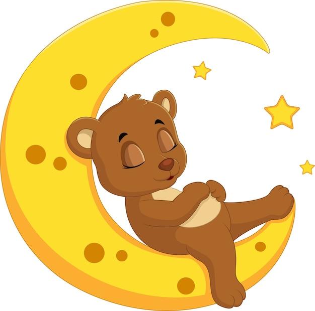 L'ours dort sur la lune Vecteur Premium