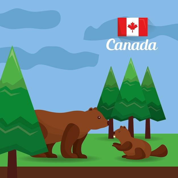 Ours Du Canada Et Castor Dans L'illustration Vectorielle De La Forêt Vecteur Premium