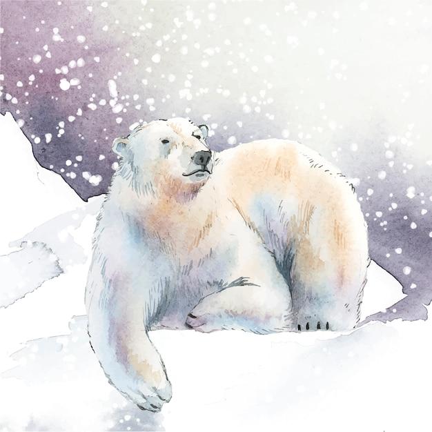 Ours polaire dessinés à la main dans le vecteur de style aquarelle neige Vecteur gratuit