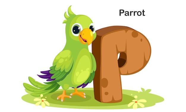 P pour perroquet Vecteur Premium