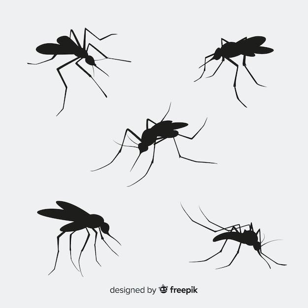 Pack De Cinq Silhouettes De Moustiques Vecteur gratuit