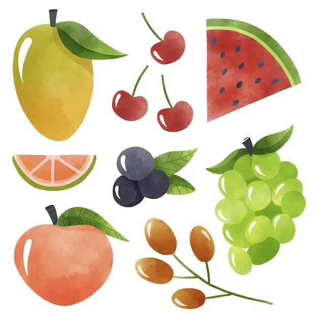 Pack De Collecte De Fruits Vecteur gratuit
