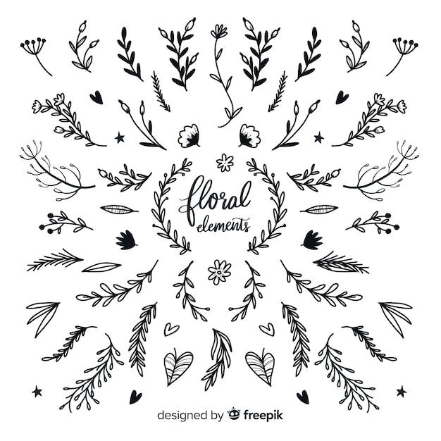 Pack d'éléments décoratifs floraux incolores Vecteur gratuit