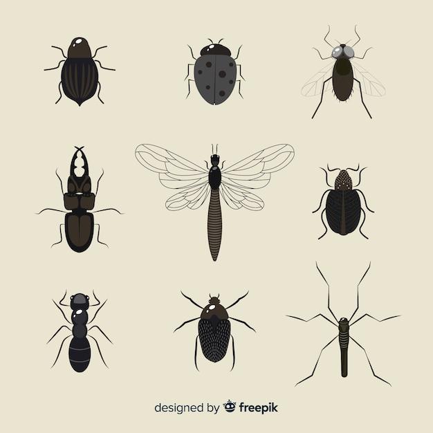 Pack d'insectes incolores Vecteur gratuit