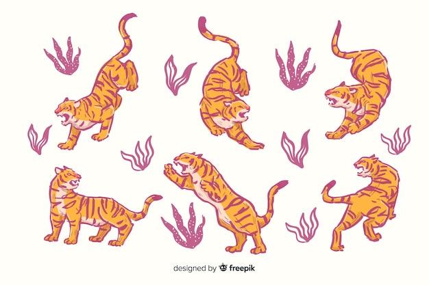 Pack de tigres dessinés à la main Vecteur gratuit