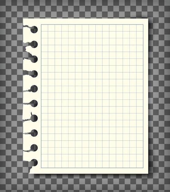 Page De Carnet De Notes à Carreaux Vide Avec Bord Déchiré Vecteur Premium