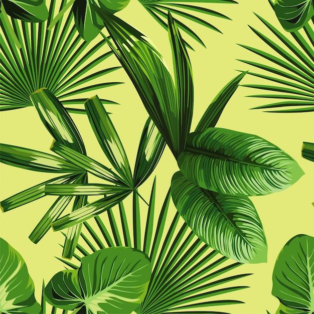 Palmier tropical feuilles fond transparent Vecteur Premium