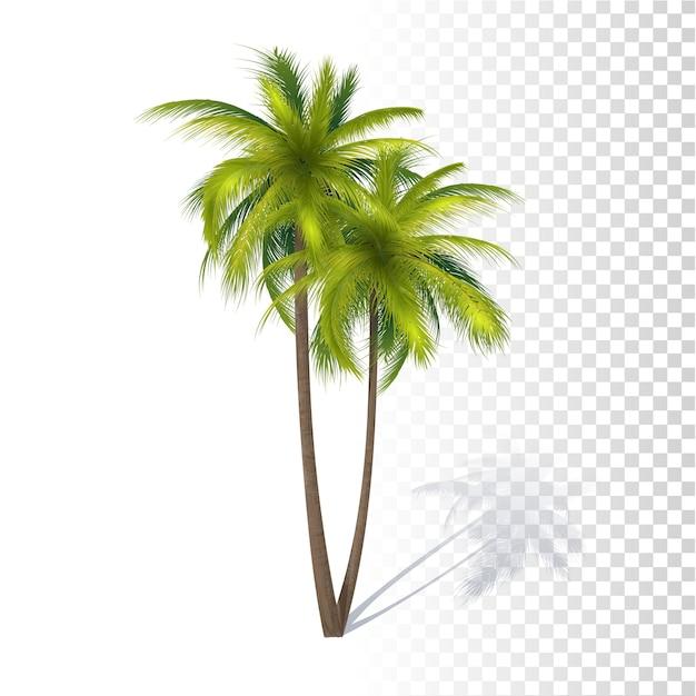 Palmier vert à la noix de coco Vecteur Premium