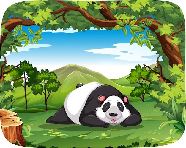Panda Dans Une Scène En Bois Vecteur Premium