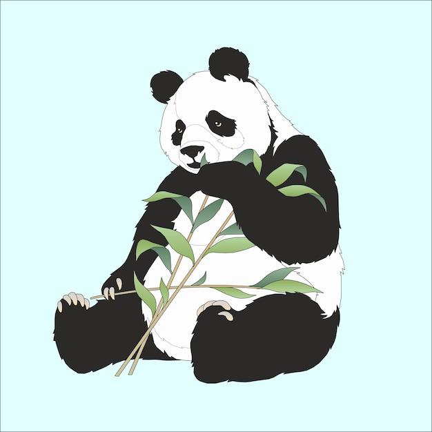 Panda mangeant du bambou Vecteur Premium