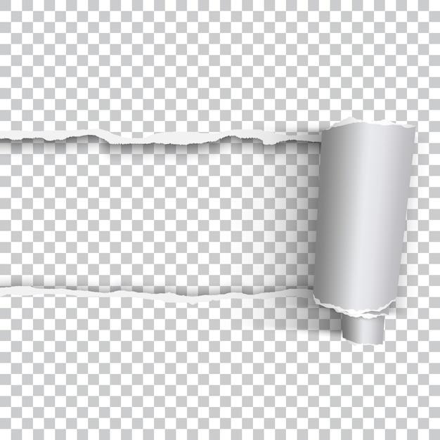Papier déchiré réaliste vector avec bord roulé sur fond transparent Vecteur Premium