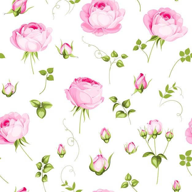 Papier Peint Rose Luxueux. Vecteur Premium