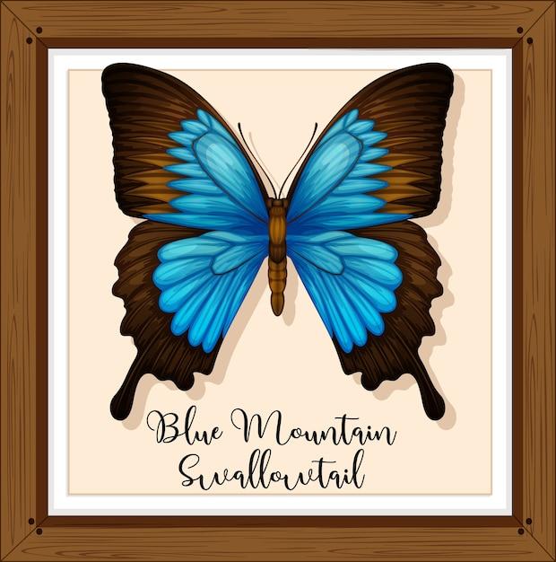 Papillon Sur Cadre En Bois Vecteur gratuit