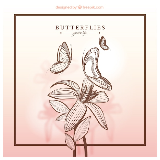 Papillons Et De Fleurs Dessinés à La Main Vecteur gratuit