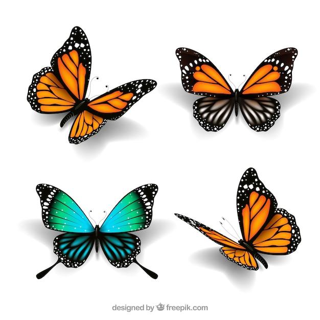 Papillons mignons dans un style réaliste Vecteur gratuit