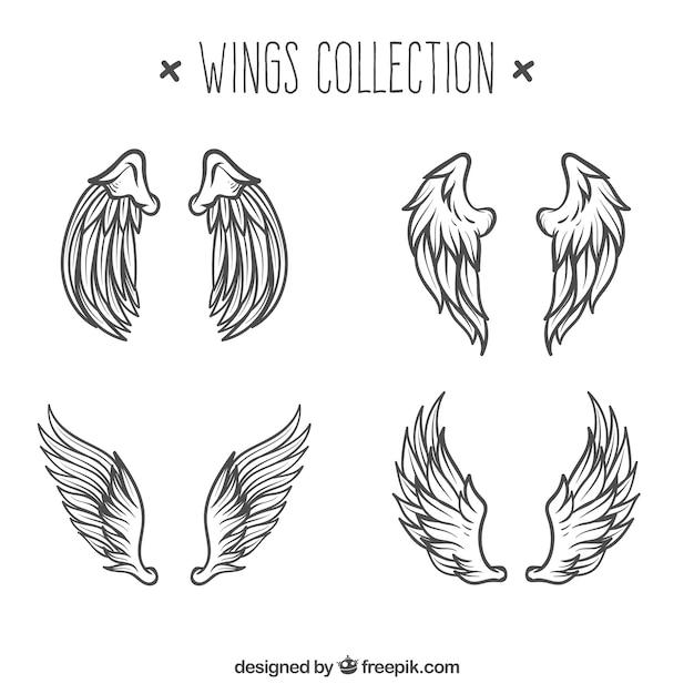 Paquet De Croquis D'ailes D'anges Vecteur gratuit