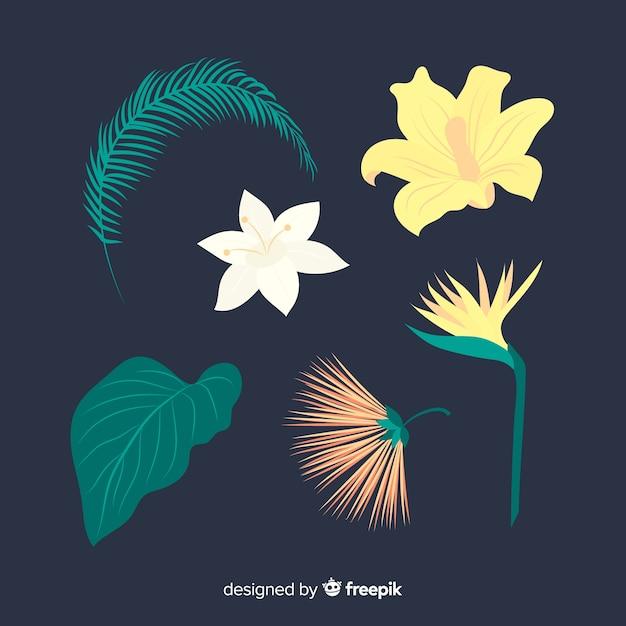 Paquet de feuilles et de fleurs tropicales plates Vecteur gratuit