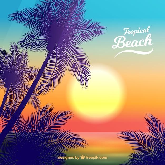 Paradise plage tropicale avec beau coucher de soleil Vecteur gratuit