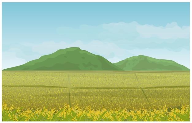 Paysage Dans Le Champ Montagne Et Ciel Dans La Campagne. Vecteur Premium
