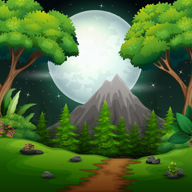 Paysage forestier de nuit avec une pleine lune Vecteur Premium