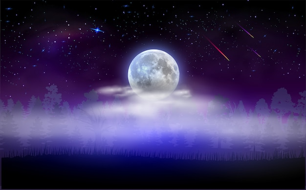 Paysage Forestier Avec La Pleine Lune Cachée Par Les Nuages. Nuit étoilée Magique. Illustration Vectorielle. Vecteur Premium