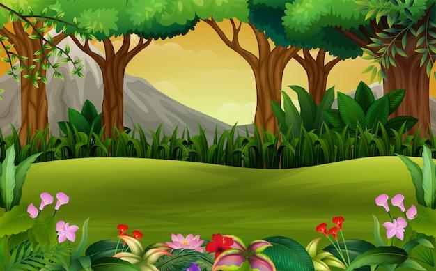 Paysage de forêt verte panoramique sur fond de montagne Vecteur Premium