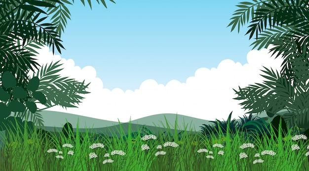 Paysage de nature vide Vecteur gratuit