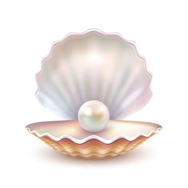 Pearl Shell Réaliste Close Up Image Vecteur gratuit